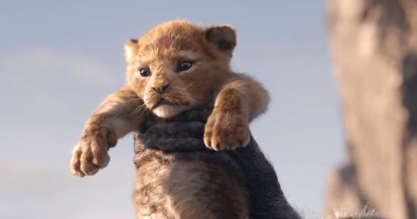 foto de simba el rey león película 2019 remake