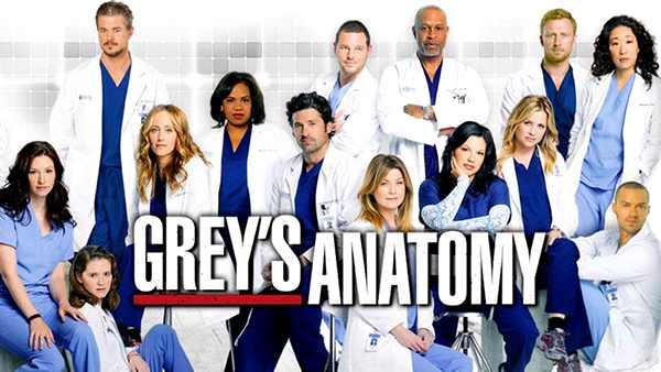 Anatomía De Grey Grey S Anatomy Temporadas Episodios Y Reparto